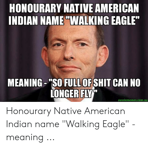 Honourary Native American Indian Name Walking Eagle Meaning So