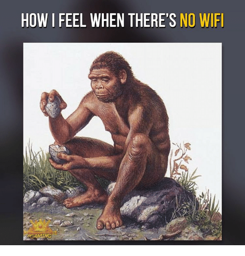 How I Feel When There S No Wifi Meme On Me Me