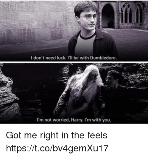 I Don T Need Luck I Ll Be With Dumbledore I M Not Worried Harry I