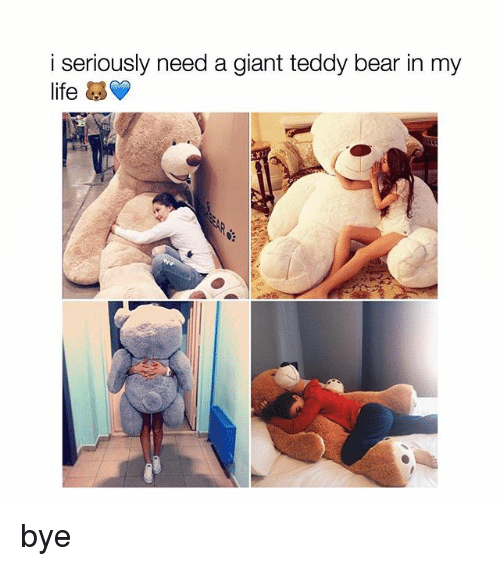 I Seriously Need A Giant Teddy Bear In My Life Bye Life Meme On