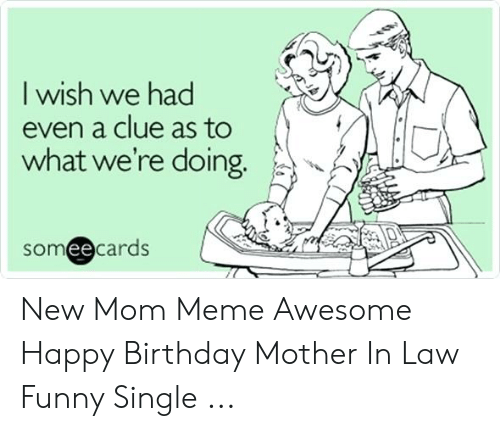 I Wish We Had Even A Clue As To What We Re Doing Someecards New Mom Meme Awesome Happy Birthday Mother In Law Funny Single Birthday Meme On Me Me