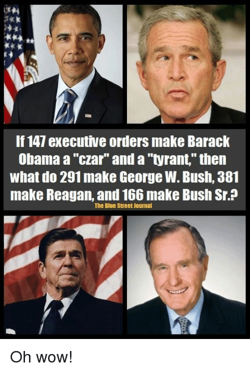 Image result for george w bush the tyrant