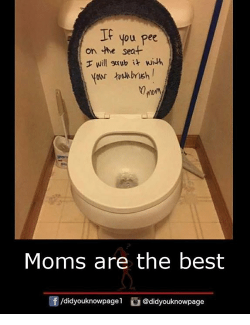 If On The Seat You Pee Will Grab It With Your Tulhbrieh Mor Moms
