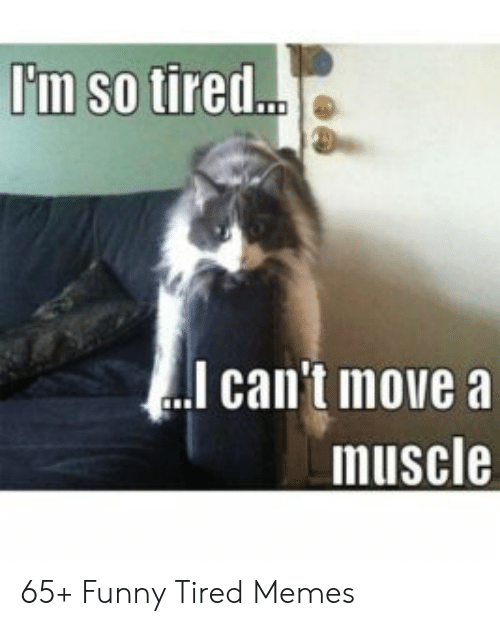 I M So Tired Il Can T Move A Muscle 65 Funny Tired Memes Funny
