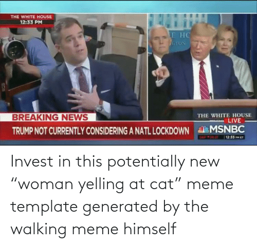 Invest In This Potentially New Woman Yelling At Cat Meme