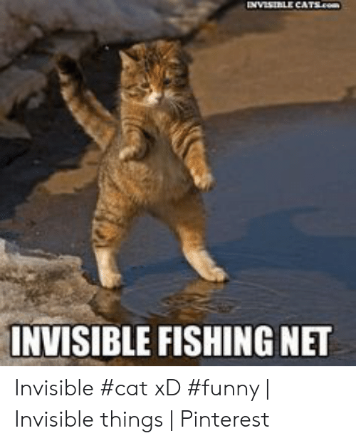 Invisible Fishing Net Invisible Cat Xd Funny Invisible Things