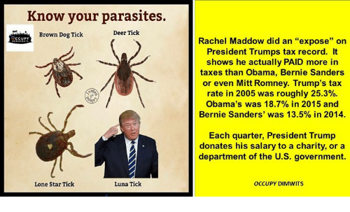 Funny Obama And Pictures Romney