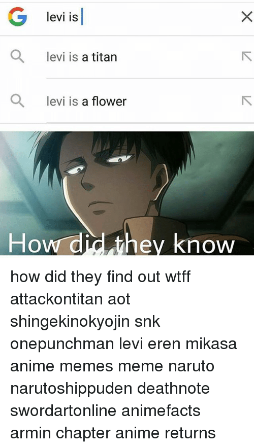 Haha Short People Are Awesome Especially Levi Attack On Titan