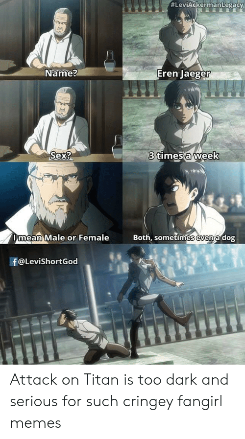 Snk Funny Levi Eren Mikasa Armin Jean Short People Problems