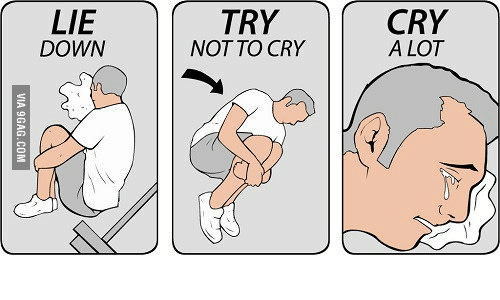 How To Not Cry Meme How To Wiki 89