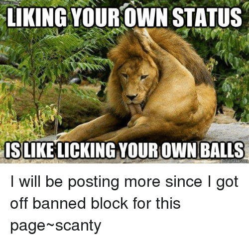 Liking Your Own Status Islikelicking Your Own Balls I Will Be Posting More Since I Got Off Banned Block For This Page Scanty Meme On Me Me