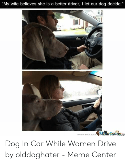 My Wife Believes She Is A Better Driver I Let Our Dog Decide Manecanterae Memecentercom Dog In Car While Women Drive By Olddoghater Meme Center Drive By Meme On Me Me