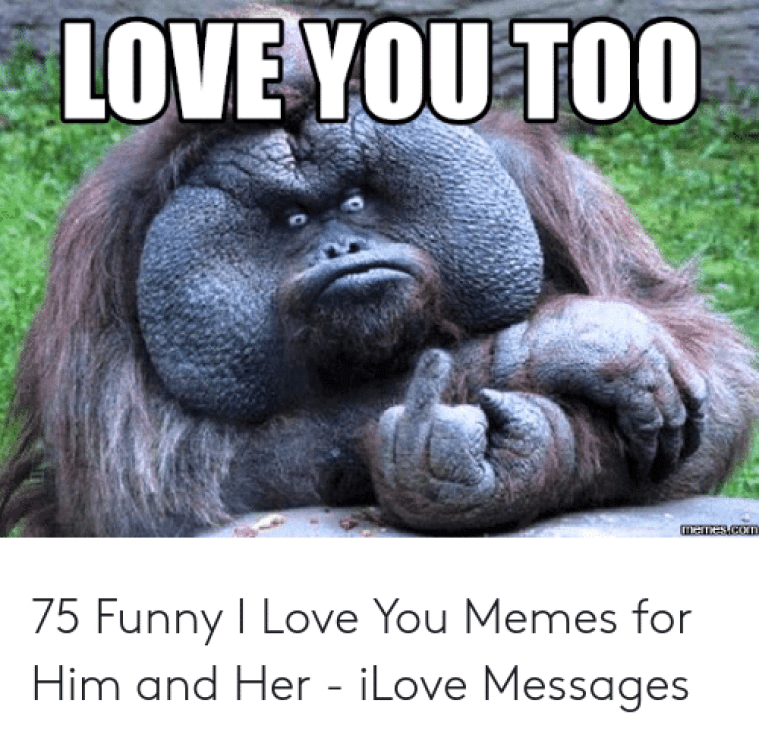 Download Love You Too Funny Meme | PNG & GIF BASE