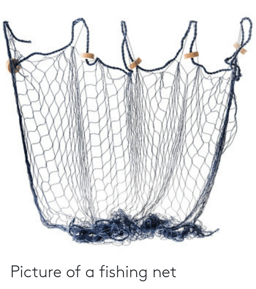 Picture Of A Fishing Net Fishing Meme On Me Me