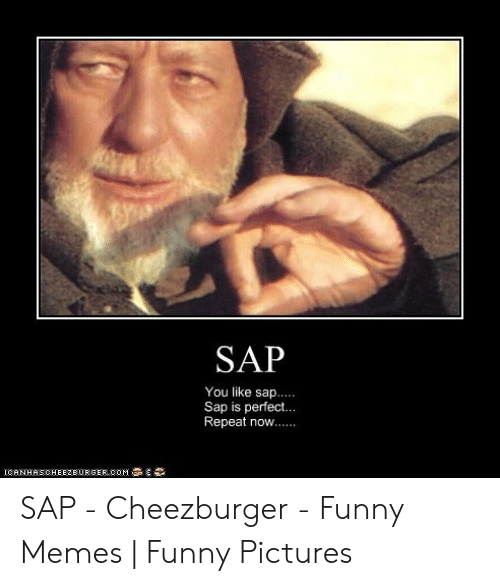 Sap You Like Sap Sap Is Perfect Repeat Now Icanhascheezeurger Oom