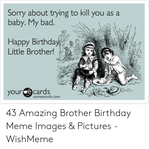 10 Funny Birthday Memes Little Brother Factory Memes