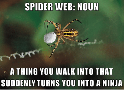 Spider Web Noun A Thing You Walk Into That Suddenly Turns You Into