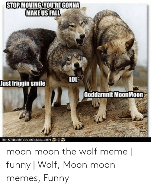 Stopmoving Youre Gonna Make Us Fall Lol Just Friggin Smile Goddamnit Moonmoon Moon Moon The Wolf Meme Funny Wolf Moon Moon Memes Funny Fall Meme On Me Me