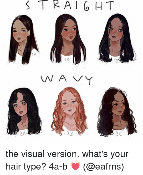 Straight 1b Vna Vy 2c The Visual Version What S Your Hair Type 4a