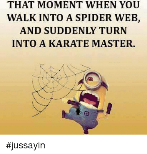 That Moment When You Walk Into A Spider Web And Suddenly Turn Into