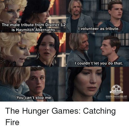 Hunger Games Lessons Meme Assignment Your Students Will Love