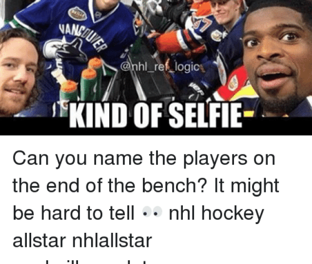 Hockey Memes And  F F A  The Only Acceptable Dipos Opus  Nand Rhl_reflogice
