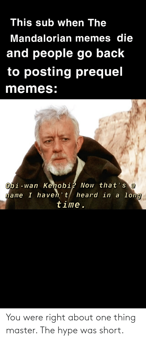 This Sub When The Mandalorian Memes Die And People Go Back To