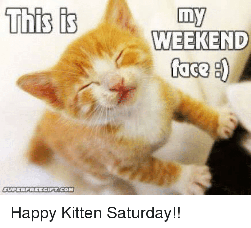 This Super Freecint Com My Weekend Face Happy Kitten Saturday