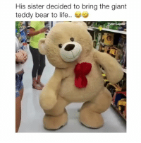 His Sister Decided To Bring The Giant Teddy Bear To Life Follow
