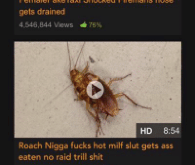 Ass Blackpeopletwitter And Milf O T Mobile 712 Pm Pornhub