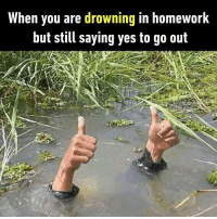 Funny Caption About Drowning In School Work Cool Attitude Captions