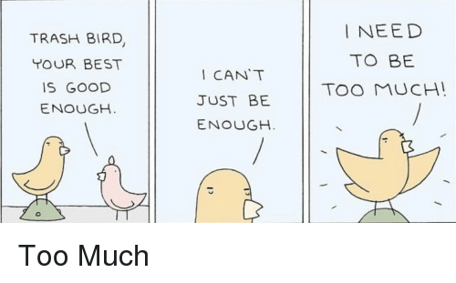 Trash Bird Tour Best Is Good Enough Cant Just Be Enough Need To Be