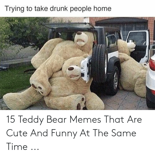 Trying To Take Drunk People Home 15 Teddy Bear Memes That Are Cute