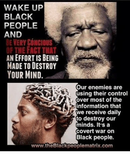 Wake Up Black People And Be Ery Concious An Effort Is Being Made