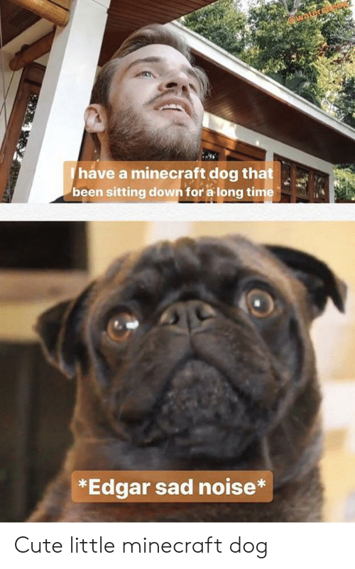 I Has A Hotdog Sitting Down Funny Dog Pictures Dog Memes