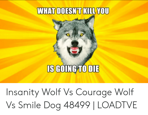 What Doesn T Kill You Is Going To Die Insanity Wolf Vs Courage Wolf Vs Smile Dog 48499 Loadtve Smile Meme On Me Me