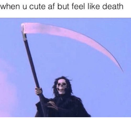 Phoenix Weather It May Feel Like Death But The Social Memes Are Life