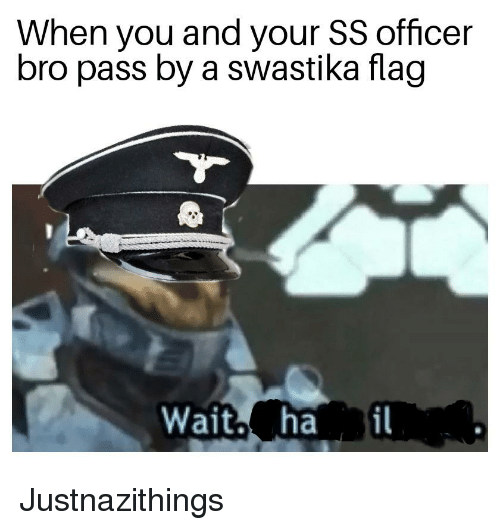 When You And Your Ss Officer Bro Pass By A Swastika Flag Wait Ha