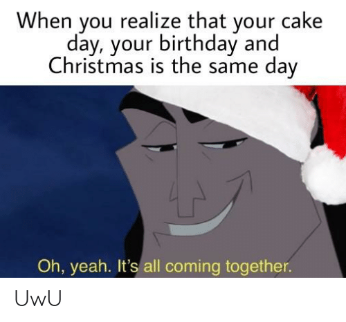 When You Realize That Your Cake Day Your Birthday And Christmas Is The Same Day Oh Yeah It S All Coming Together Uwu Birthday Meme On Me Me