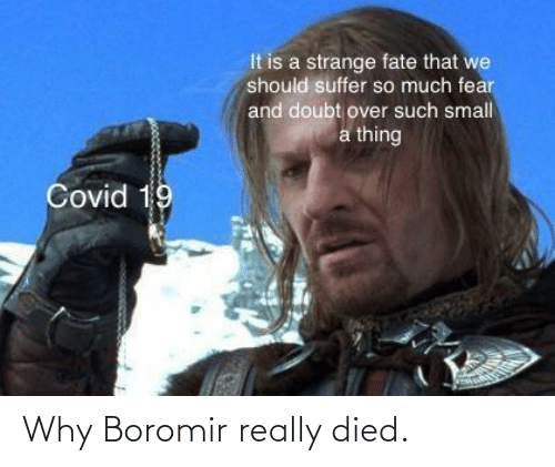 The Lord Of The Rings Memes Gifs Imgflip