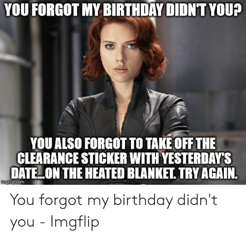 You Forgot My Birthday Didnt Youa You Also Forgot To Take Off The Clearance Sticker With Yesterdays Datelon The Heated Blankettry Again Ngflipcom You Forgot My Birthday Didn T You Imgflip