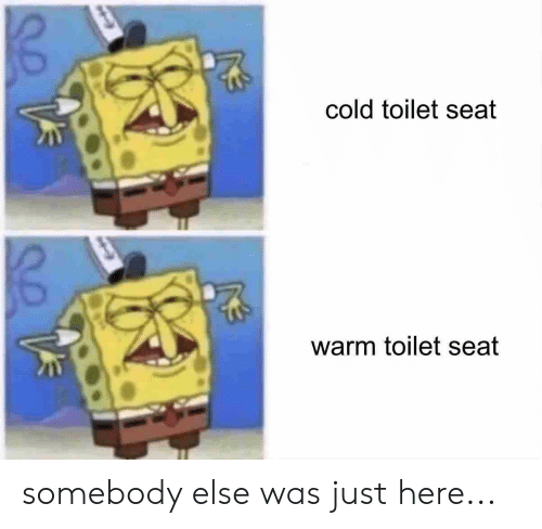 Cold Toilet Seat Warm Toilet Seat Somebody Else Was Just Here