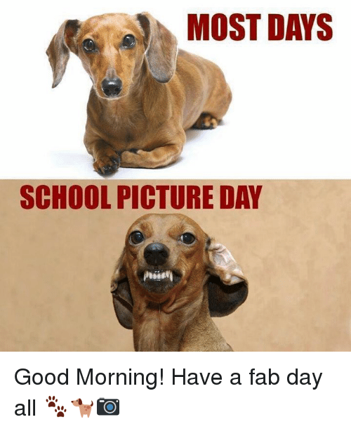 Funny Picture School Day