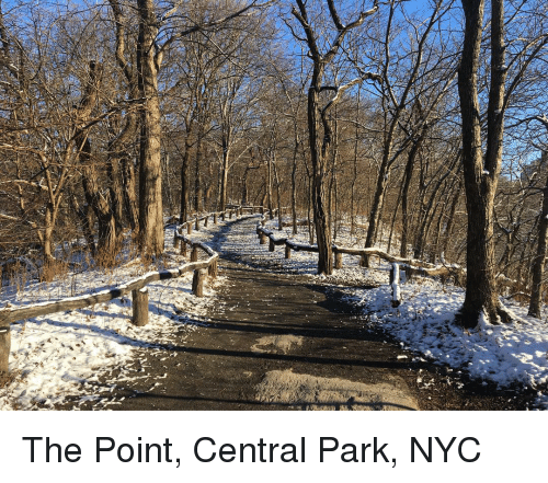 Ipadw This Is What Central Park New York Looks Like Meme On Me Me