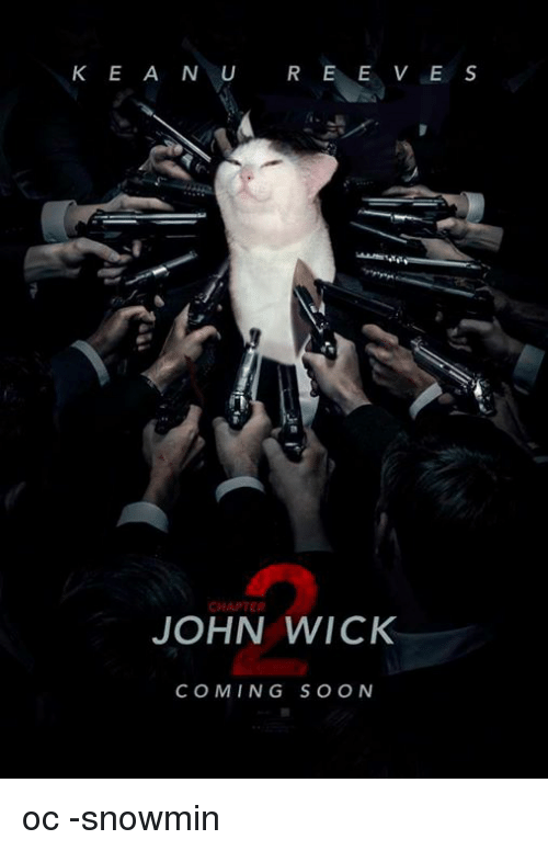 Funny John Wick Memes Of 2016 On SIZZLE Dogs