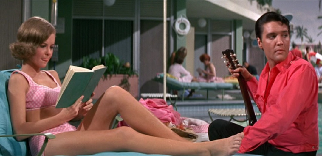 https://i2.wp.com/pics.wikifeet.com/Shelley-Fabares-Feet-280087.jpg