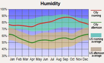 Emmaus, Pennsylvania humidity