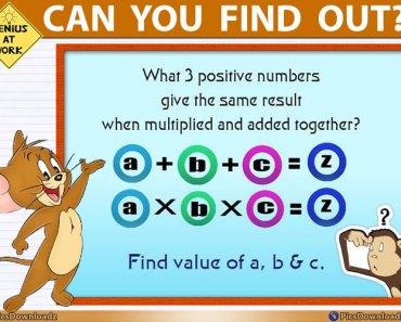 Brainteasers Math Puzzle