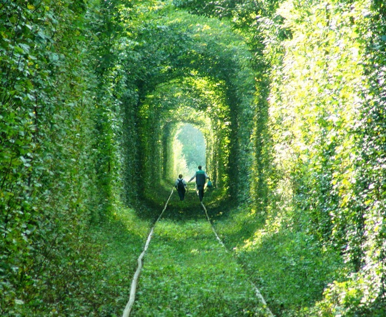 beautiful-photos-of-dad-and-son-in-tunnel-of-love-in-kleven-ukraine