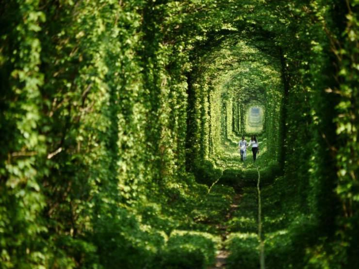 romantic-couple-beautiful-photos-of-tunnel-of-love-in-kleven-ukraine